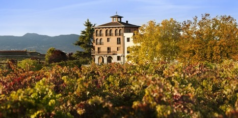 Wine of the Week: A Celtic Rioja - Forbes   Wine Geographic   Scoop.it