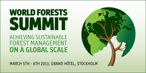 World Forest Summit March 2013 | Social & Development Log of ... | Mangroves In Pakistan. | Scoop.it
