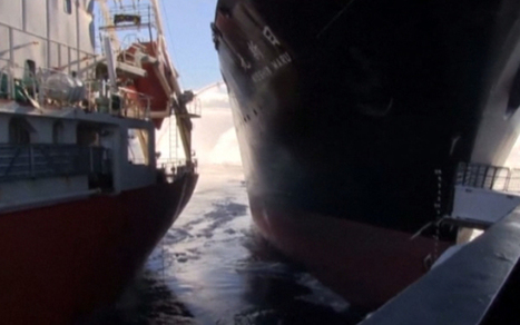 Japanese ship collides with anti-whaling protesters off Antarctica - Telegraph | What are the key conflicts occurring in 2013 and where are they happening? | Scoop.it
