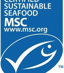 WWF concerned over MSC credibility after 'spate of controversial certifications' | Attitude BIO | Scoop.it
