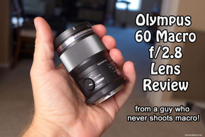 The Olympus ED 60mm f/2.8 Macro Review by Steve Huff   The E ...   olympus 60mm f2.8   Scoop.it