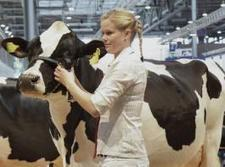 EuroTier 2014: Die Highlights für Rinderhalter   agrar   Scoop.it