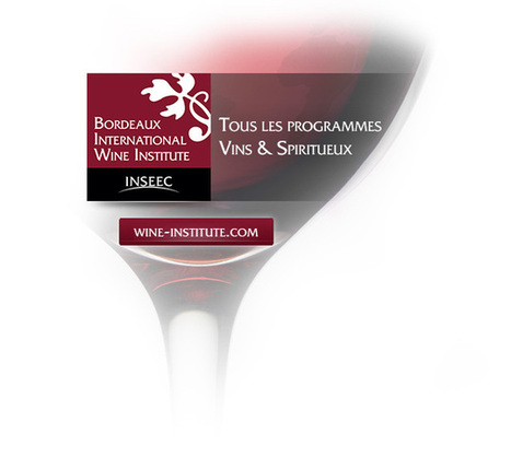 MBA Wine Marketing and Management - INSEEC MSc & MBA | Ingénieur Vitivinicole | Scoop.it