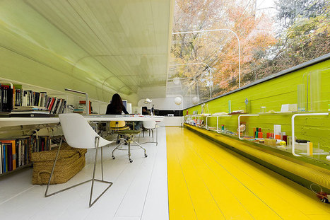 Glass Office Makes Employees Feel Like They're In The Middle Of The Woods | Coworking; Domiciliation d'entreprises; Centre d'affaires | Scoop.it