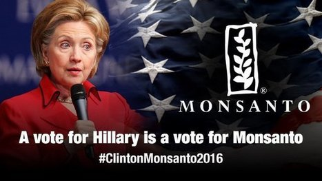 'Hillary Clinton now Fleeing the Public & Media After Being Outed as 'Bride of #Frankenfoods'' #EmailGate #ClintonMonsanto2016 #Glyphosate | News You Can Use - NO PINKSLIME | Scoop.it