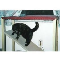 How to build a cat climbing structure | Cat Stuff | Scoop.it
