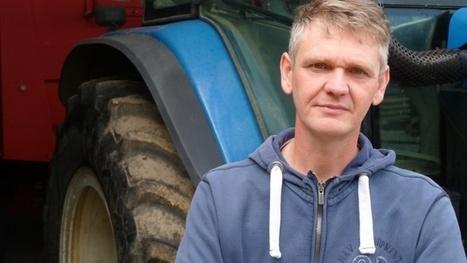 Lutte contre le ray-grass dans le blé | Agriculture | Scoop.it