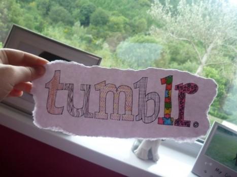 ¿Cómo migrar desde Tumblr a WordPress? - Bitelia | Denken Fabrik | Scoop.it