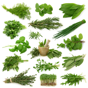 Top 10 Anti Inflammatory Herbs | Sustain Our Earth | Scoop.it