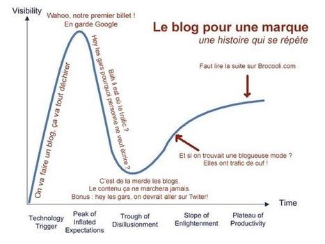 Blog et Marques : une Relation à Réinventer | WebZine E-Commerce &  E-Marketing - Alexandre Kuhn | Scoop.it