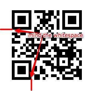 flash webcam qr code reader online qr codes. Black Bedroom Furniture Sets. Home Design Ideas
