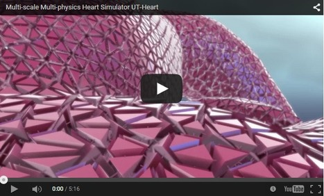 See Inside The Human Heart Like Never Before | Recursos Online | Scoop.it