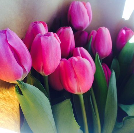 Mother's Day Flowers - Same day delivery Sydney   Fashion, Beauty & Flowers   Scoop.it