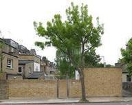 Woolley finishes own sunken home - Architects' Journal | Icynene Spray Foam Insulation | Scoop.it