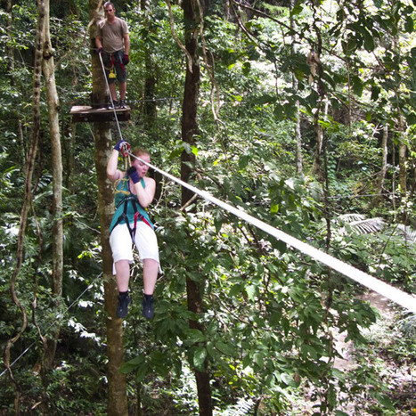 Adventure travel: Treetop hopping in Krabi | Thailand Business News | Scoop.it