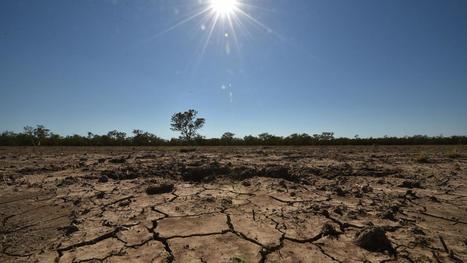 Dordogne : la sécheresse exceptionnelle inquiète les agriculteurs | Agriculture en Dordogne | Scoop.it