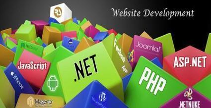 Connect with a Leading Website Development Company Delhi   Mobile and Internet advertising   Scoop.it
