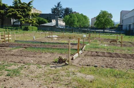 Le réseau jardins, un outil pour créer du lien entre les habitants | (Culture)s (Urbaine)s | Scoop.it