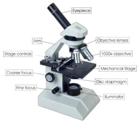 (EN) - Optical Microscopy Glossary for Translators | dyerlabs.com | Leila | Scoop.it