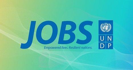 UNDP Jobs - 65071- Finance Clerk | Regiones y territorios de Colombia | Scoop.it