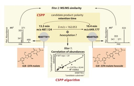 Systematic Structural Characterization of Metabolites in Arabidopsis via Candidate Substrate-Product Pair Networks   postharvest central   Scoop.it