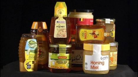 La qualité des miels laisse franchement à désirer | apiculture 2.0 | Scoop.it