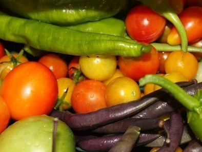 Organic Vegetable Gardening -- Maybe it's the Hottest Gardening Trend in 2013! | Simply Grow Great Food | Scoop.it