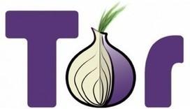 Espionnage : le projet TOR déconseille à ses utilisateurs l'usage de Windows   Geeks   Scoop.it