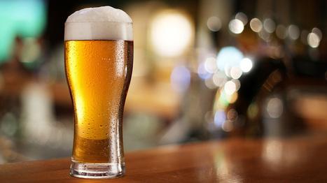 Les effets positifs de la bière sur la santé dont vous n'avez pas idée   Nature, climat, environement et santé   Scoop.it