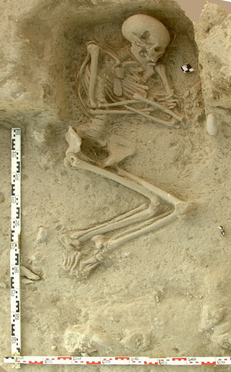 Early farmers from across Europe were direct descendants of Aegeans | Histoire et Archéologie | Scoop.it