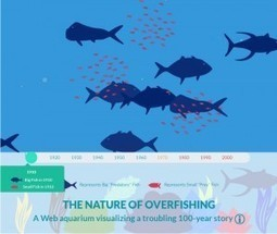 An #Interactive Web Aquarium: What #Overfishing Looks Like - KQED (blog) | Rescue our Ocean's & it's species from Man's Pollution! | Scoop.it