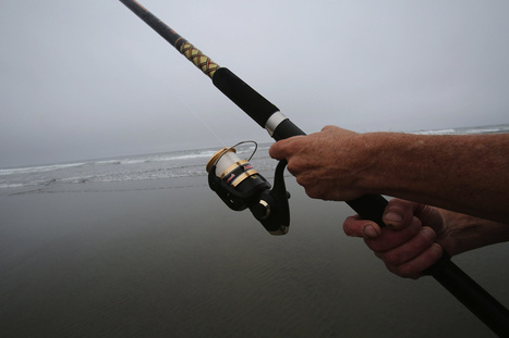 Northwest Wanderings: Surf fishing - The Seattle Times | Fishing | Scoop.it