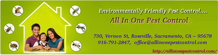 Eco-Friendly Pest Control Sacramento CA | AllInOnePestControl | All in One Pest Control | Scoop.it