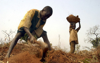 How climate change politics are ruining African agriculture | Daraja.net | Scoop.it