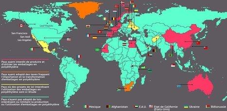 Pollution par sacs plastiques : la Moldavie, Zanzibar, l'Egypte, le Rwanda, la Chine en avance sur la France, la Suisse et surtout les USA | Toxique, soyons vigilant ! | Scoop.it