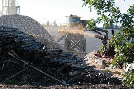 Le granulé de bois utilisé en Europe détruit les forêts des Etats-Unis | Des nouvelles de la 3ème révolution industrielle | Scoop.it