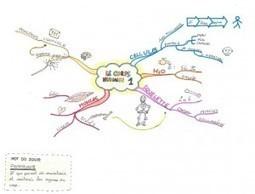 Mind Map 51: une carte dessinée à la main VS imindmap. | Medic'All Maps | Scoop.it