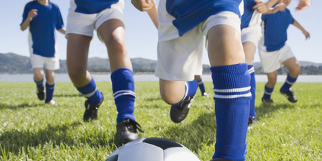 Youth Sports World Is Insane - Huffington Post | Sport Research | Scoop.it