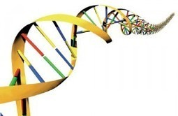 DNA - The New Big Data Storage Solution of the 21st Century? | CloudTimes | IT Insights | Scoop.it