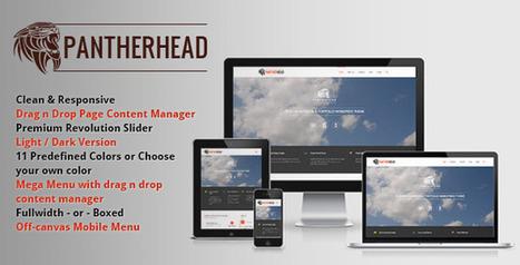 PantherHead – Premium Business & Portfolio Theme Download | Best Wordpress Themes | Scoop.it