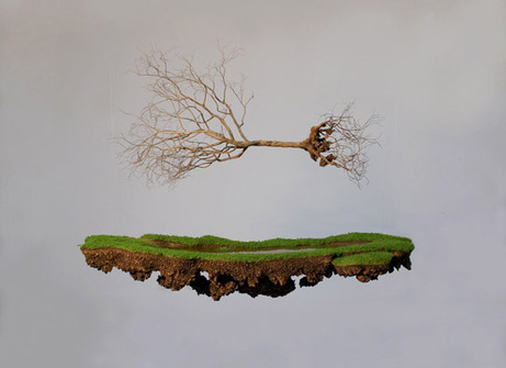 """Rooted"" Sculptures by Jorge Mayet 
