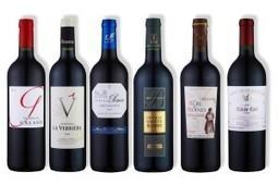 Finale du Talent du Bordeaux Supérieur   Blog Planète Bordeaux   Bordeaux wines for everyone   Scoop.it