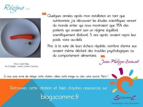 S Comm C, le blog » Blog Archive » Régime … | Citations | Scoop.it
