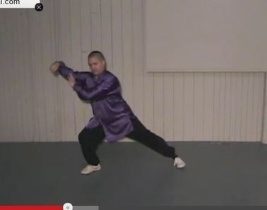 Tai Chi 24 form lessons 19, 20, & 21. Snake creeps & Rooster Stands | tai chi & Qigong | Scoop.it
