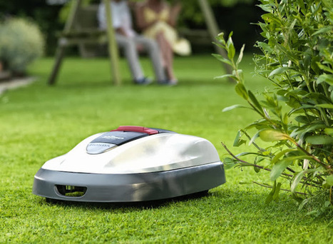 Alternative Eden Exotic Garden: If Only We had a Lawn... | ExoticGardening | Scoop.it