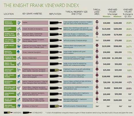 The World's Hottest Vineyard Property: Which wine regions have seen the biggest price rises over the past year, and what exactly can you get for your money? | Autour du vin | Scoop.it