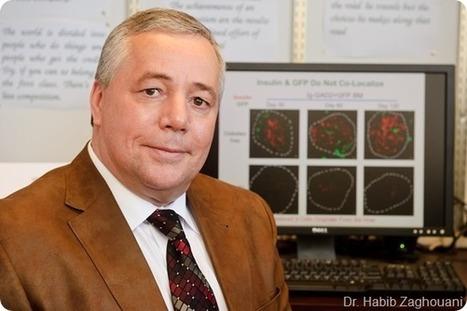 Professeur Habib Zaghouani trouve un remède potentiel contre le diabète de type 1 | L'aspirine, nouvel espoir contre le cancer colorectal | Scoop.it