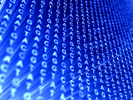 Genomic Data Growing Much Faster Than Twitter and YouTube | Amazing Science | Scoop.it
