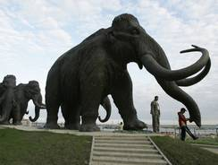 Mammoth fragments from Siberia raise cloning hopes | Science In The News | Scoop.it