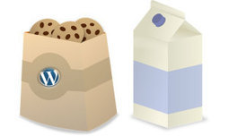 Votre blog WordPress, la Loi et les Cookies   News Webmarketing   Scoop.it